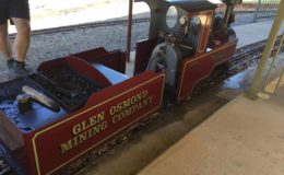 Koppel, a working miniature steam loco owned by member Bob Nash